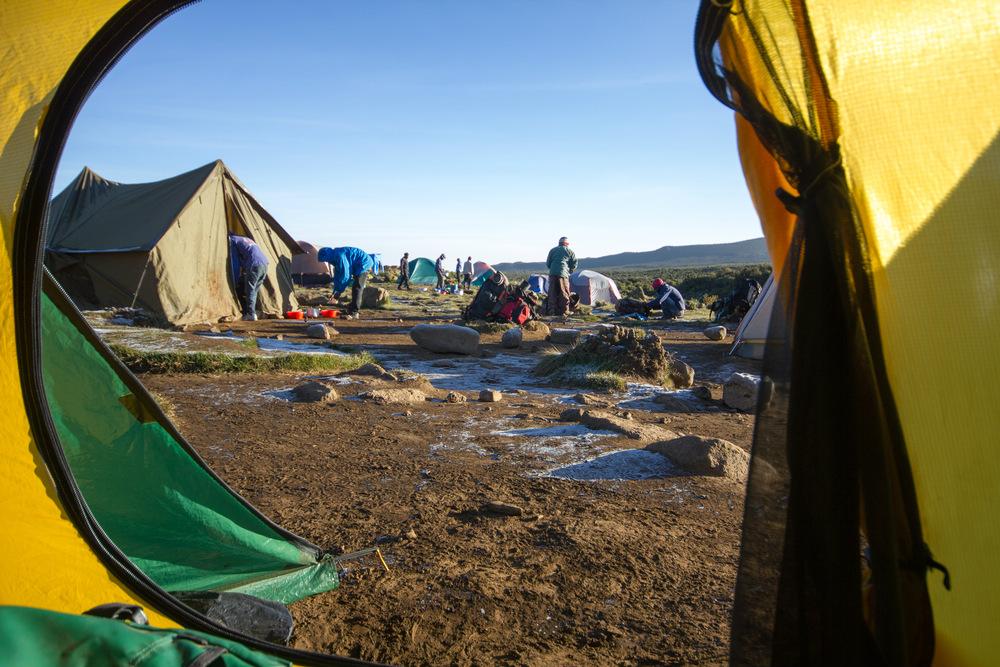 kilimanjaro in tent