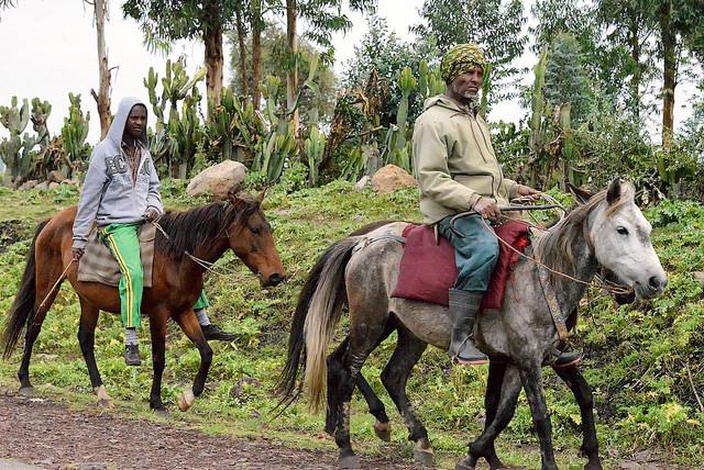 oromo men horses