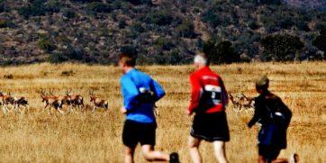 south africa marathon