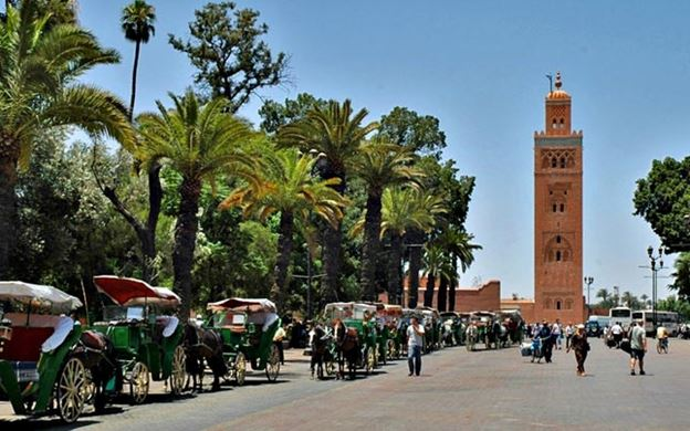 gardens of Marrakech