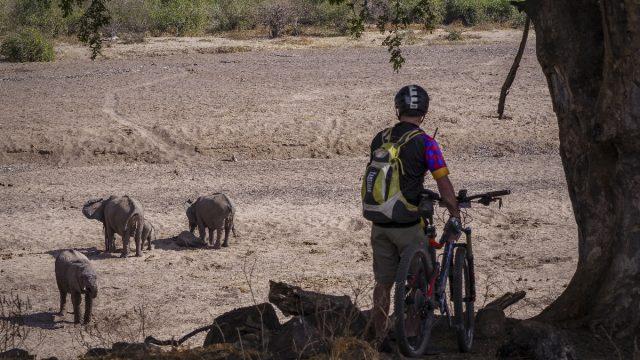 cycle botswana
