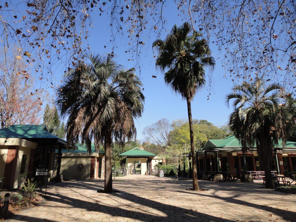 kwazulu-natal garden