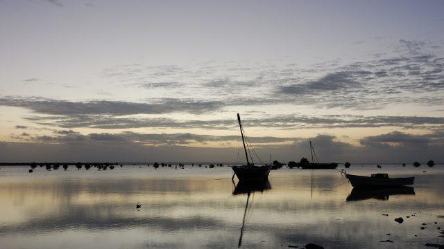 ilha ibo