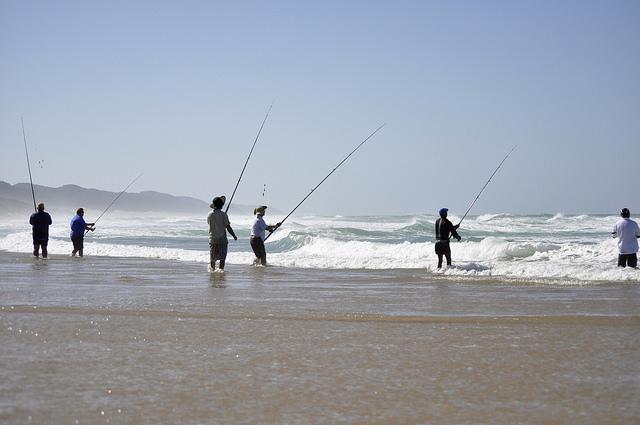 isi fishing